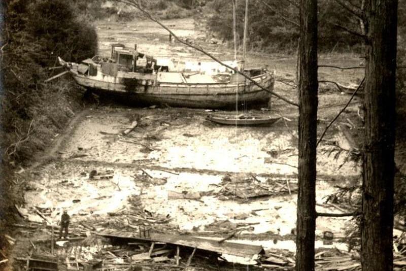 昭和南海地震から70年−南海トラフ地震、生かせ過去の教訓   科学技術・大学 ニュース   日刊工業新聞 電子版