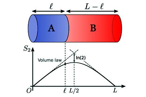 東大、「量子もつれ」で物理現象説明 ブラックホールから半導体電子 ...
