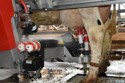 搾乳ロボ、酪農経営の力に 大規模化で普及に伸びしろ