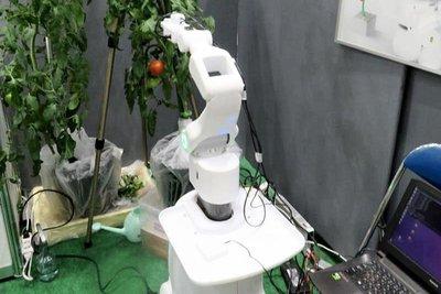 赤いトマト選んで収穫 サイバニクス研、光測定・AI活用の自走式ロボ開発