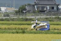 農林水産業・食品産業分野の関連画像