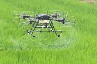 農林水産業・食品産業分野ニュースの関連画像